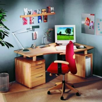 <strong>TREND - Homeoffice</strong><br>in Buche